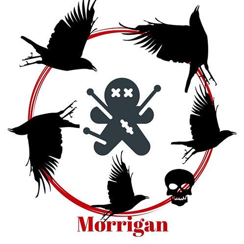 Crow Poppet - Goddess Morrigan