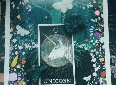 Lessons of a Unicorn