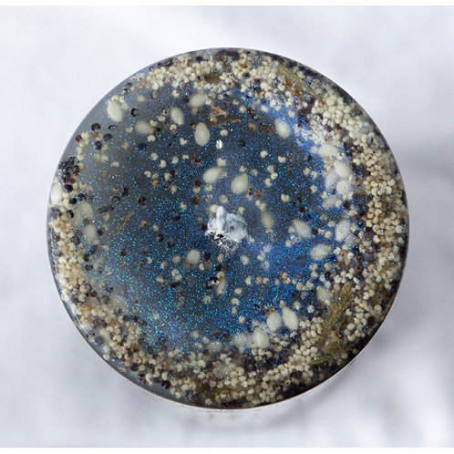 Starry Pillar - Silver Birch - Tree magick