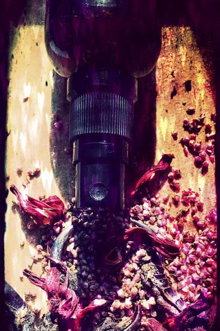 Starry Aura Spell Spritz Spray - Temple of the Wild Woman