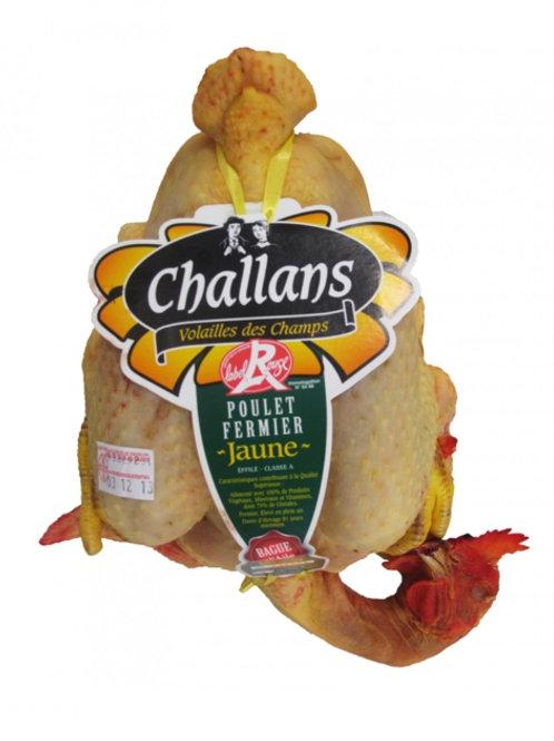 Kylling Effilée Landes, Label Rouge