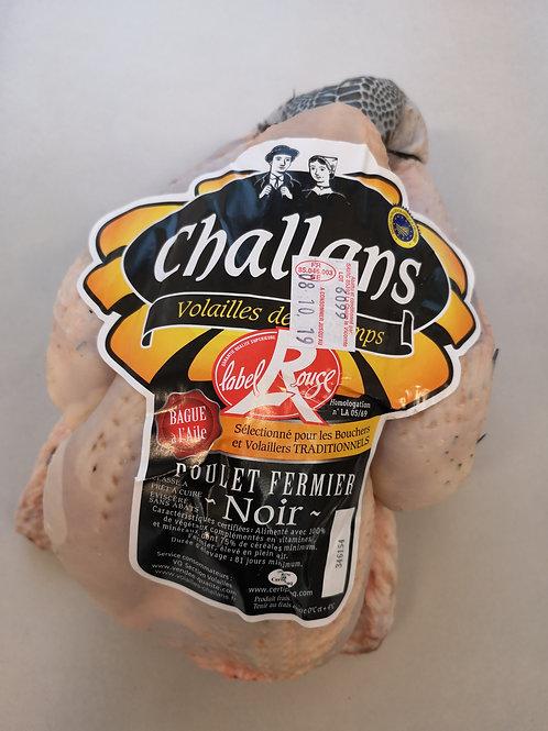 Kylling Challans Noir - PAC