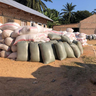 Rice for TFT-sponsored Families