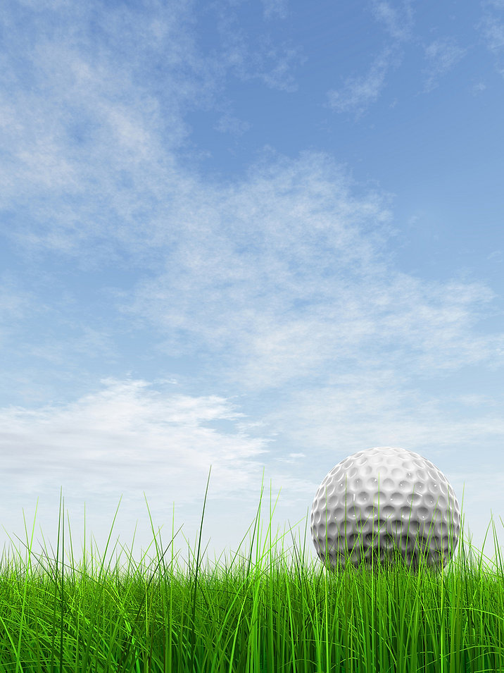 2019 image for golf website.jpg