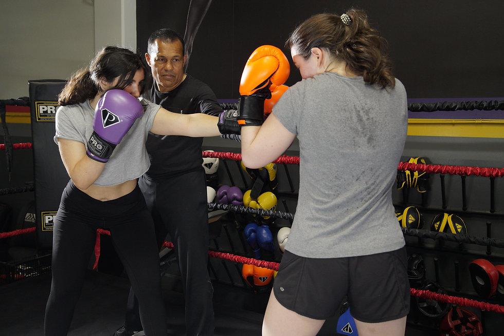 FitSport Boxing