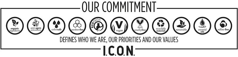 our-commitment-icon.jpg
