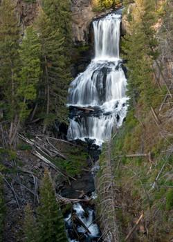 Undine Falls (YNP)