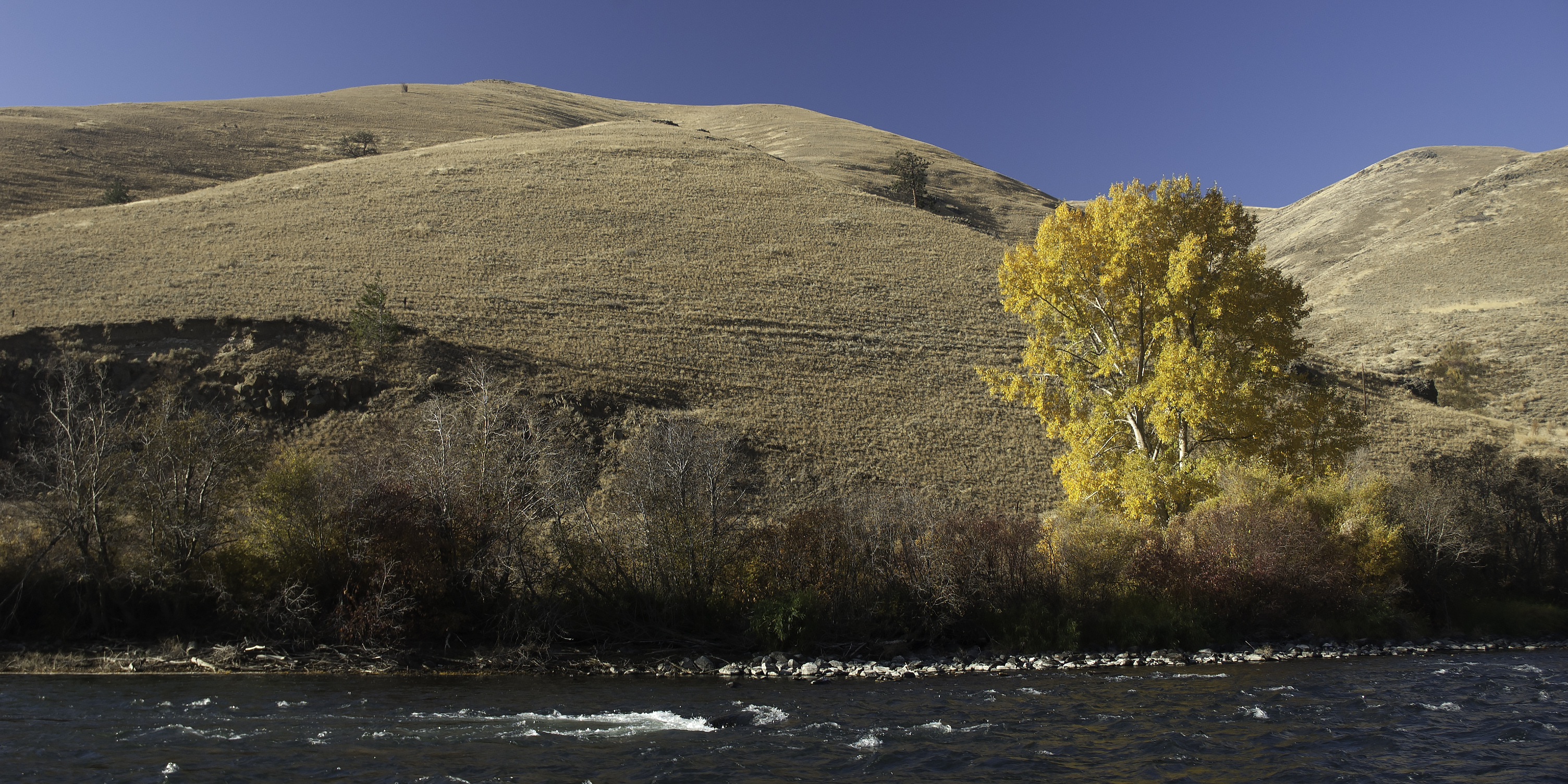 Yakima River in the Fall