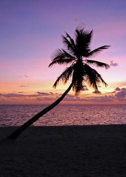 Sunrise (Ambergris Caye)