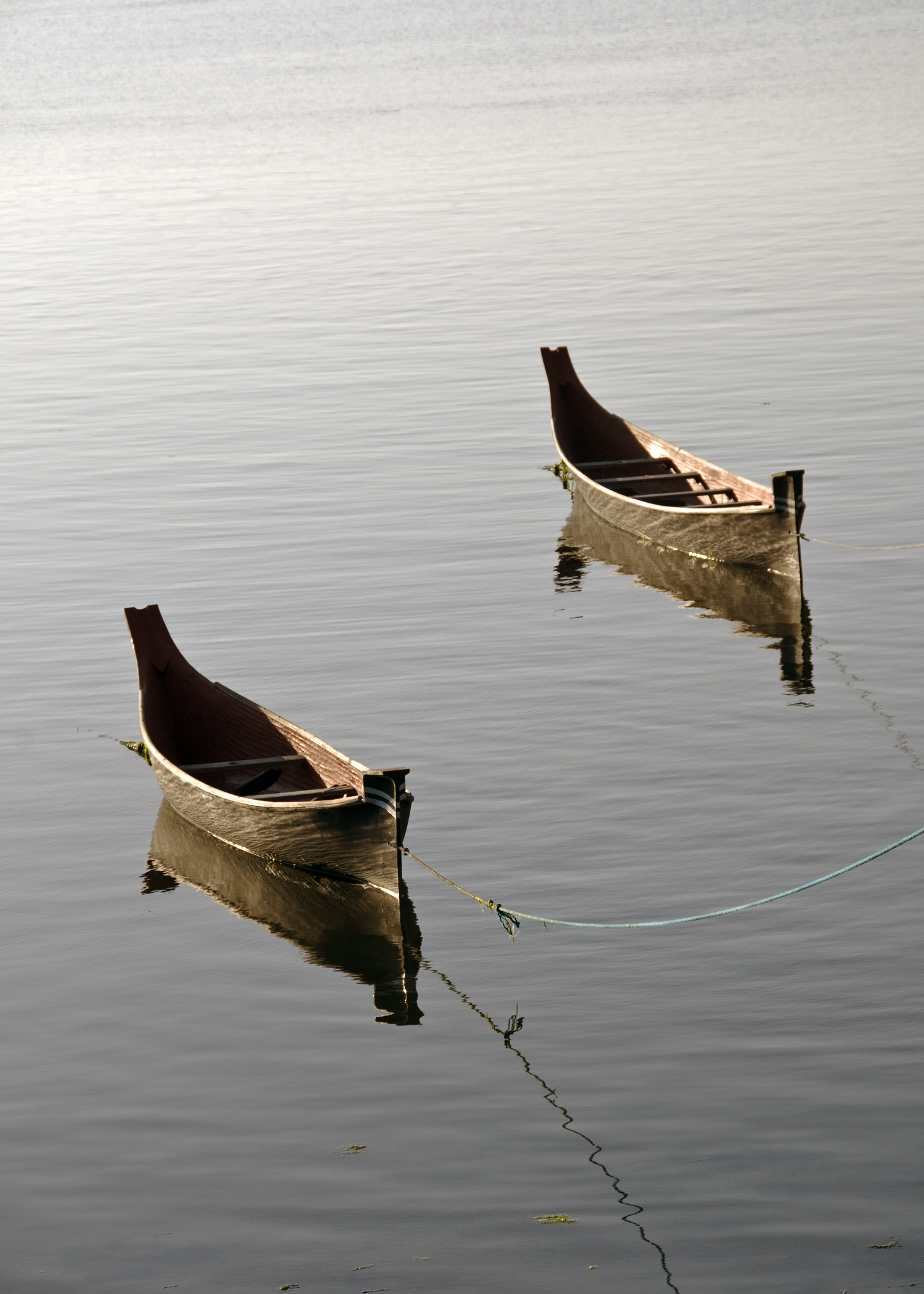 Indian Dugout Canoes