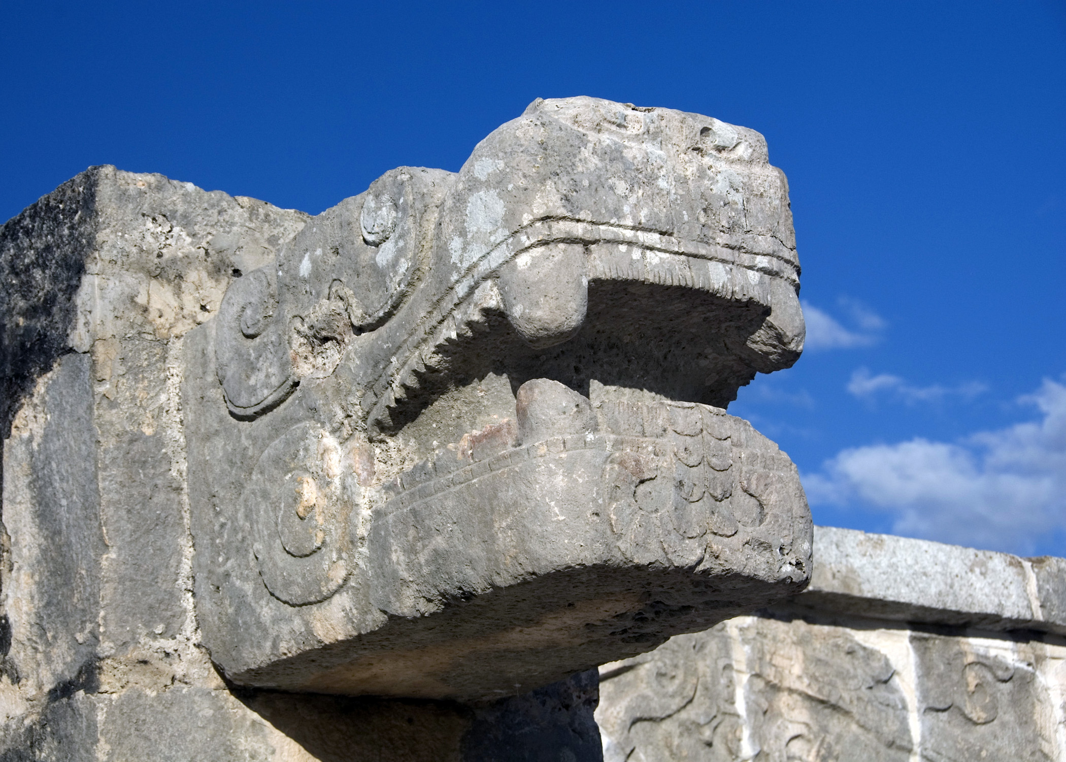 Platform of the Jaguars (C.I.)