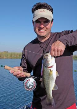 Large Mouth Bass (Black Bass)