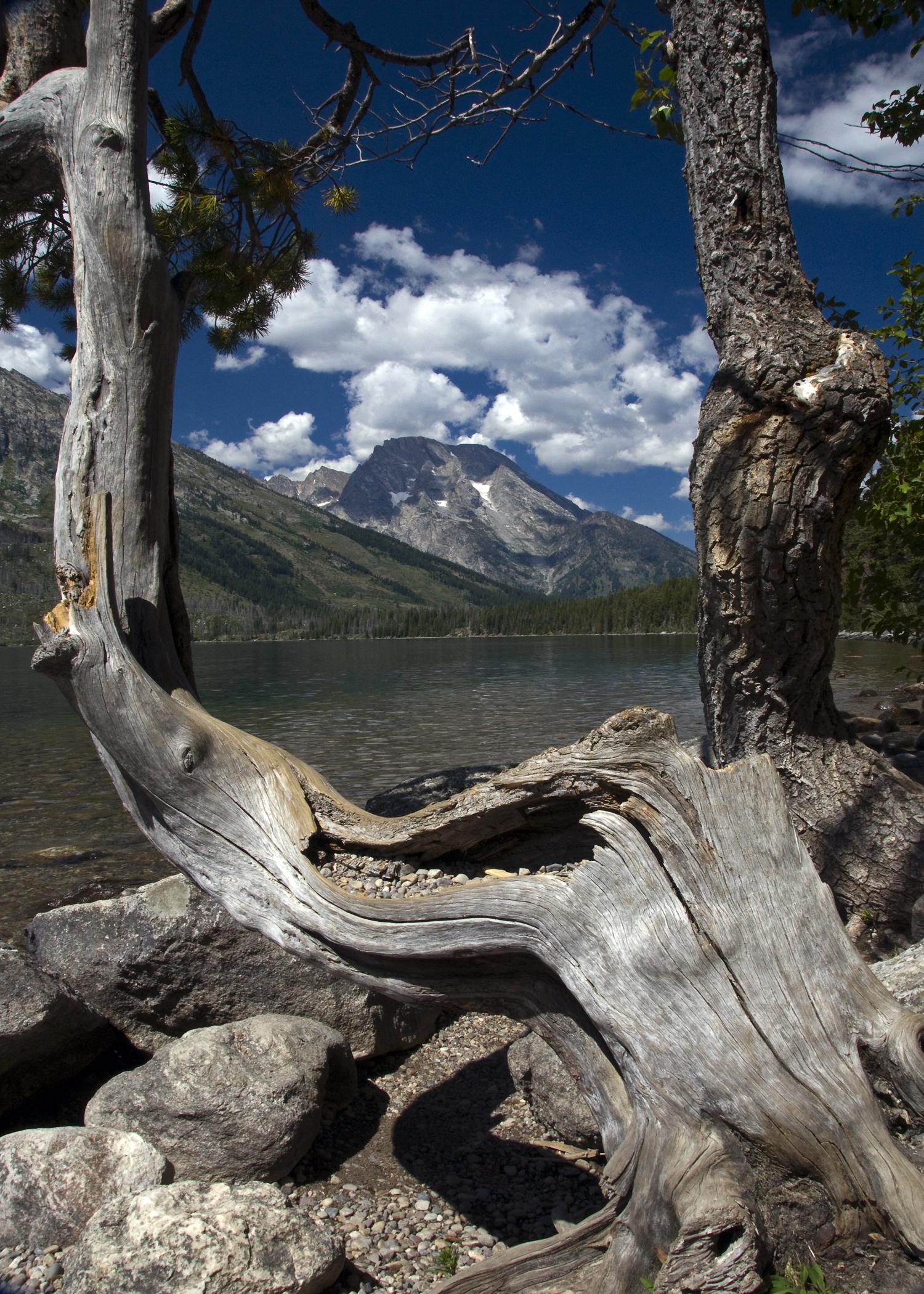 Jackson Lake (GTNP)