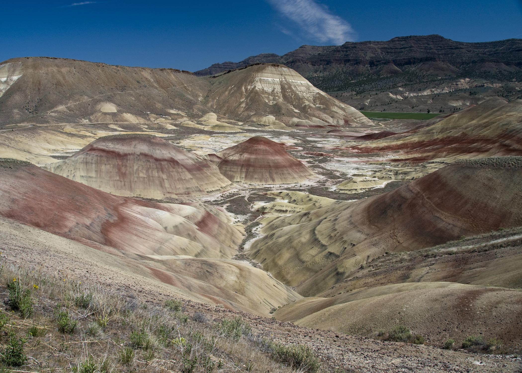 Painted Hills (JDNP)