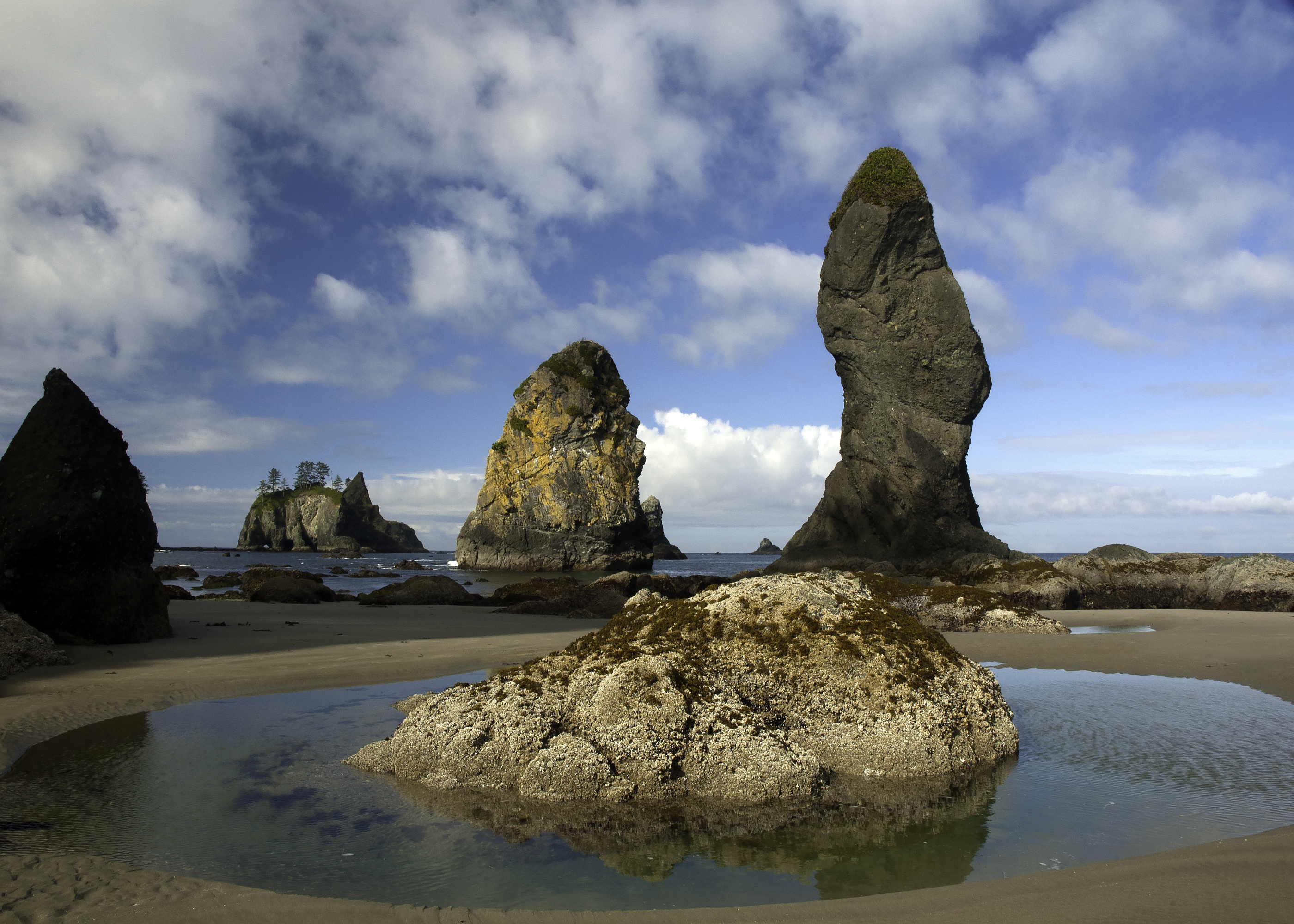 Sea Stacks on Shi Shi Beach