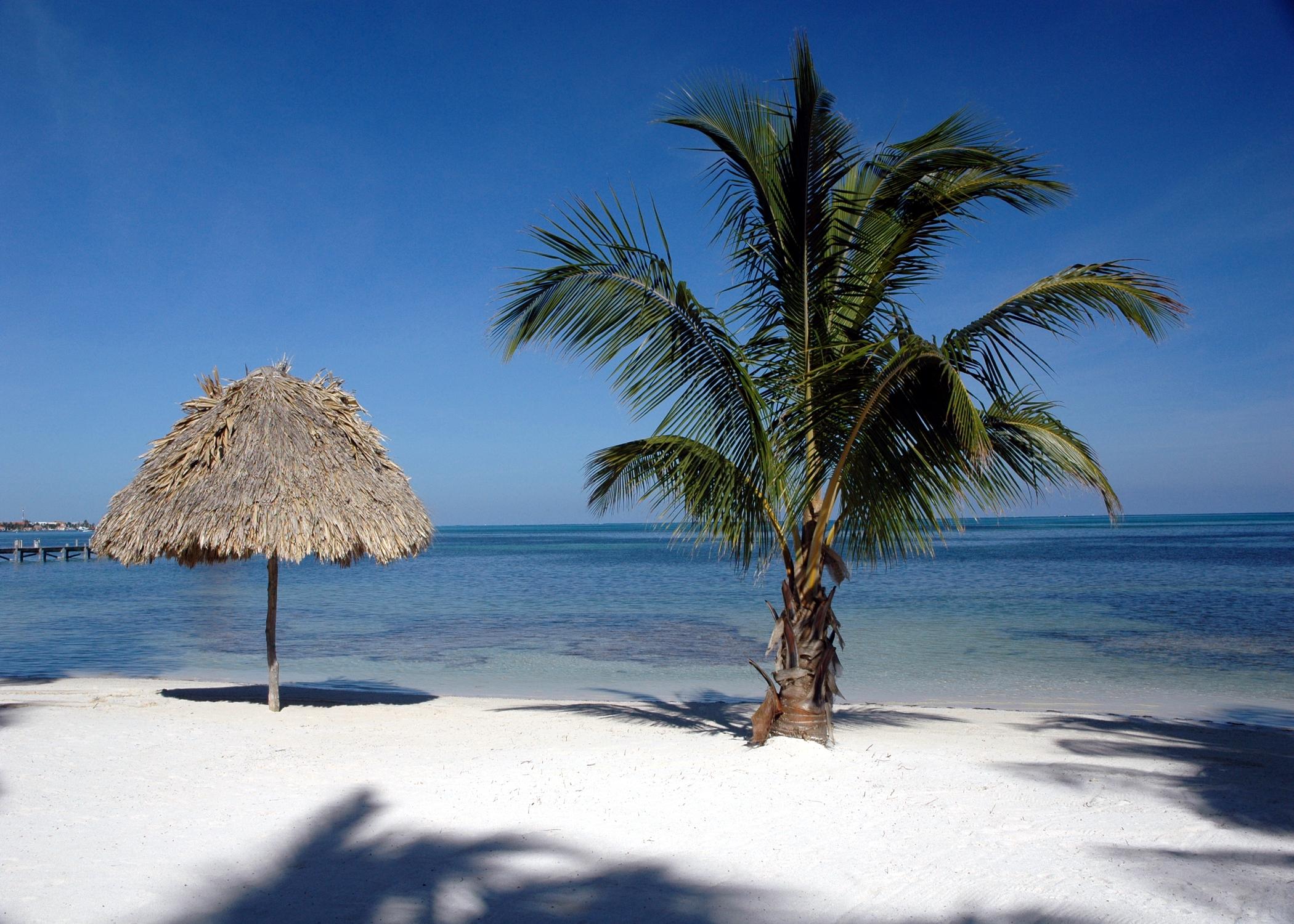 Palapa (Ambergris Caye)