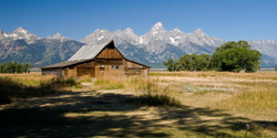 Famous Barn (YNP)