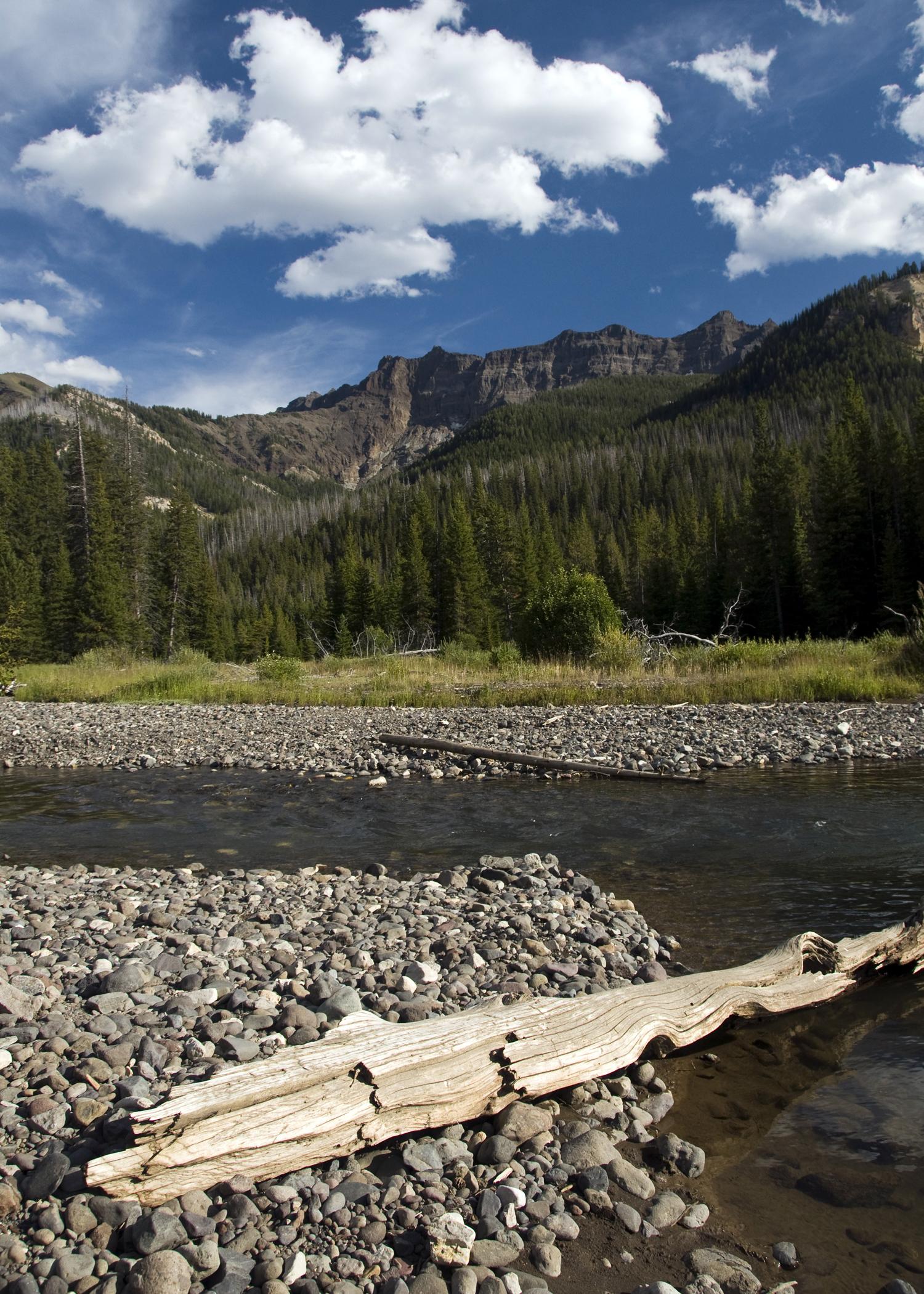 Sodda Butte Creek (YNP)