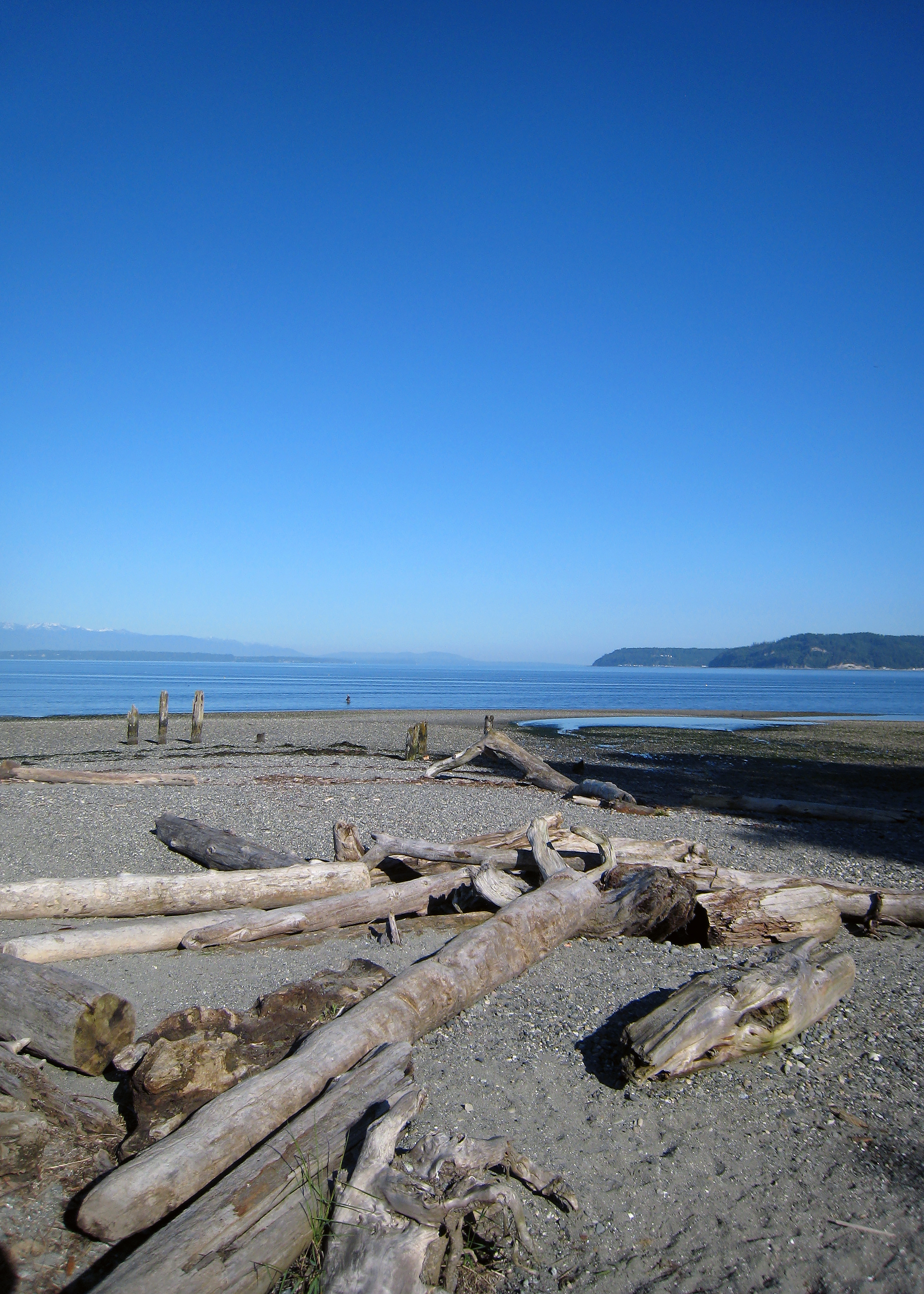 Picnic Point (Puget Sound)