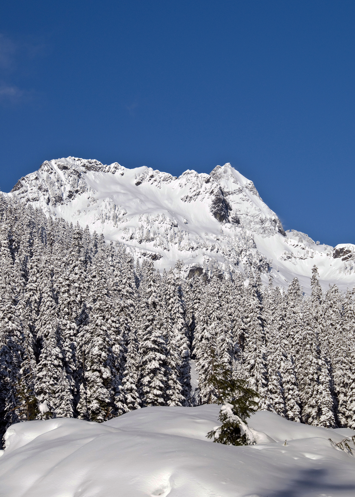 Alpental Back Country