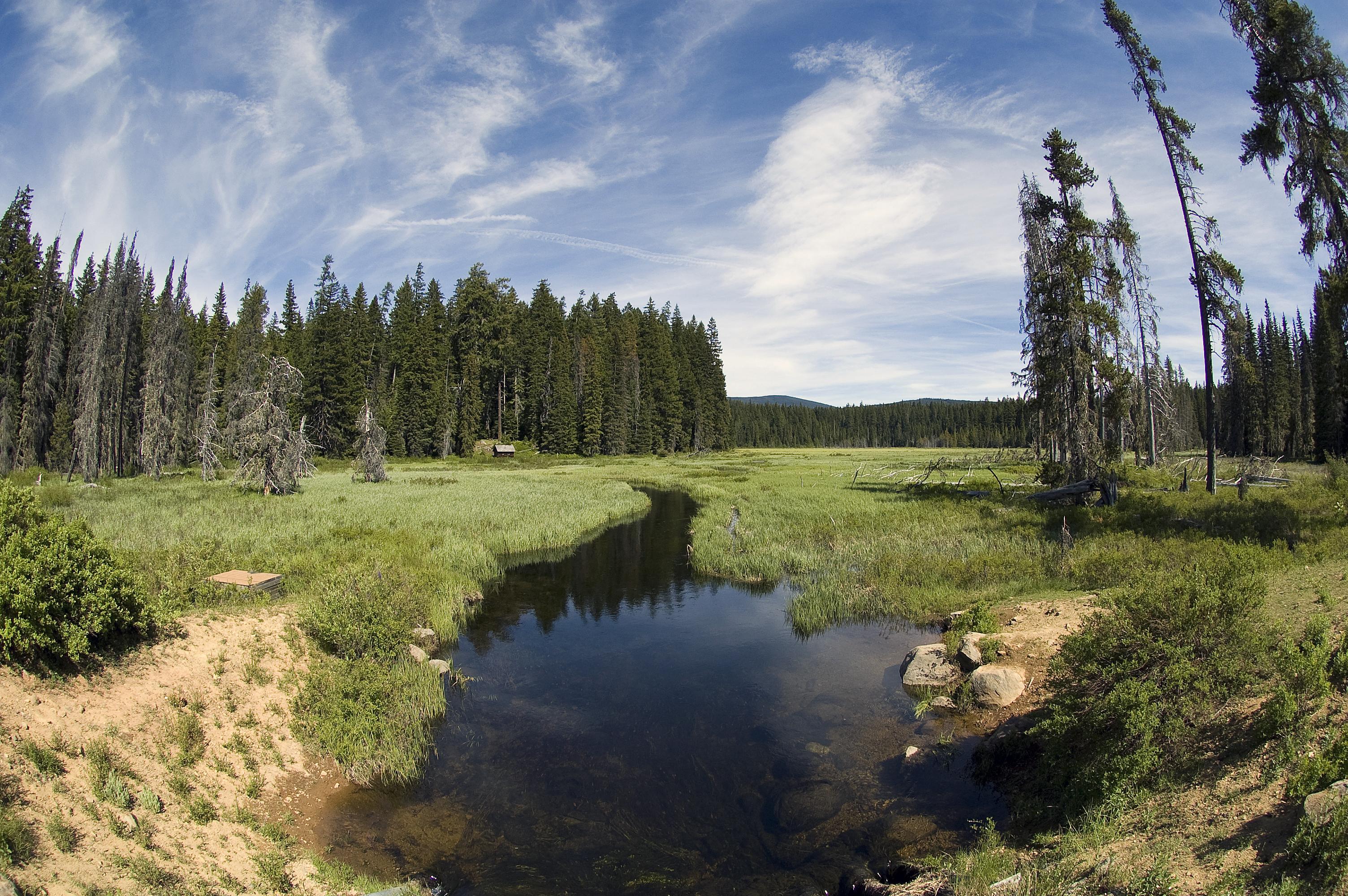 Timothy Creek (Fisheye)