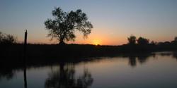 A Beautiful Sunrise by Frank's Trac