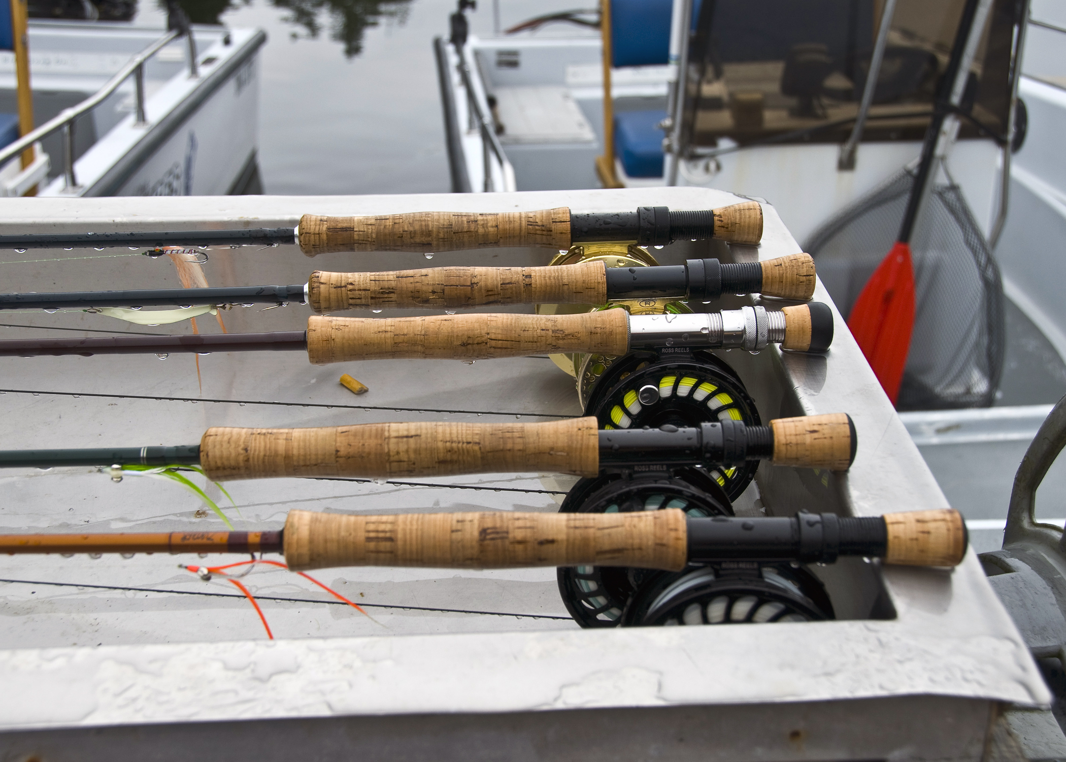 Fly Rods Rigged for Salmon