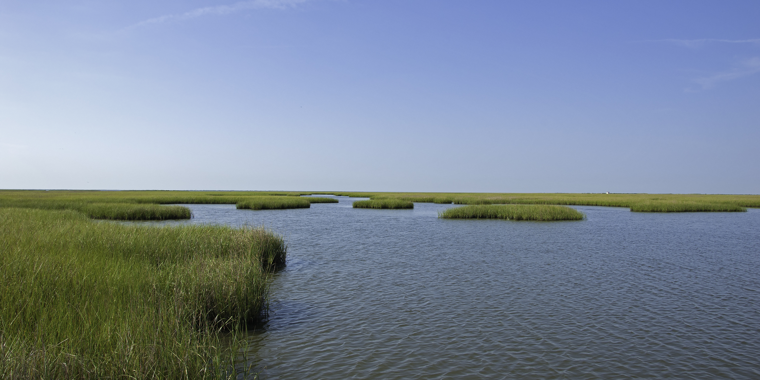 Biloxi Marsh
