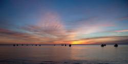 Fishing Fleet (Los Barriles)