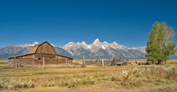 Famous Barn (GTNP)