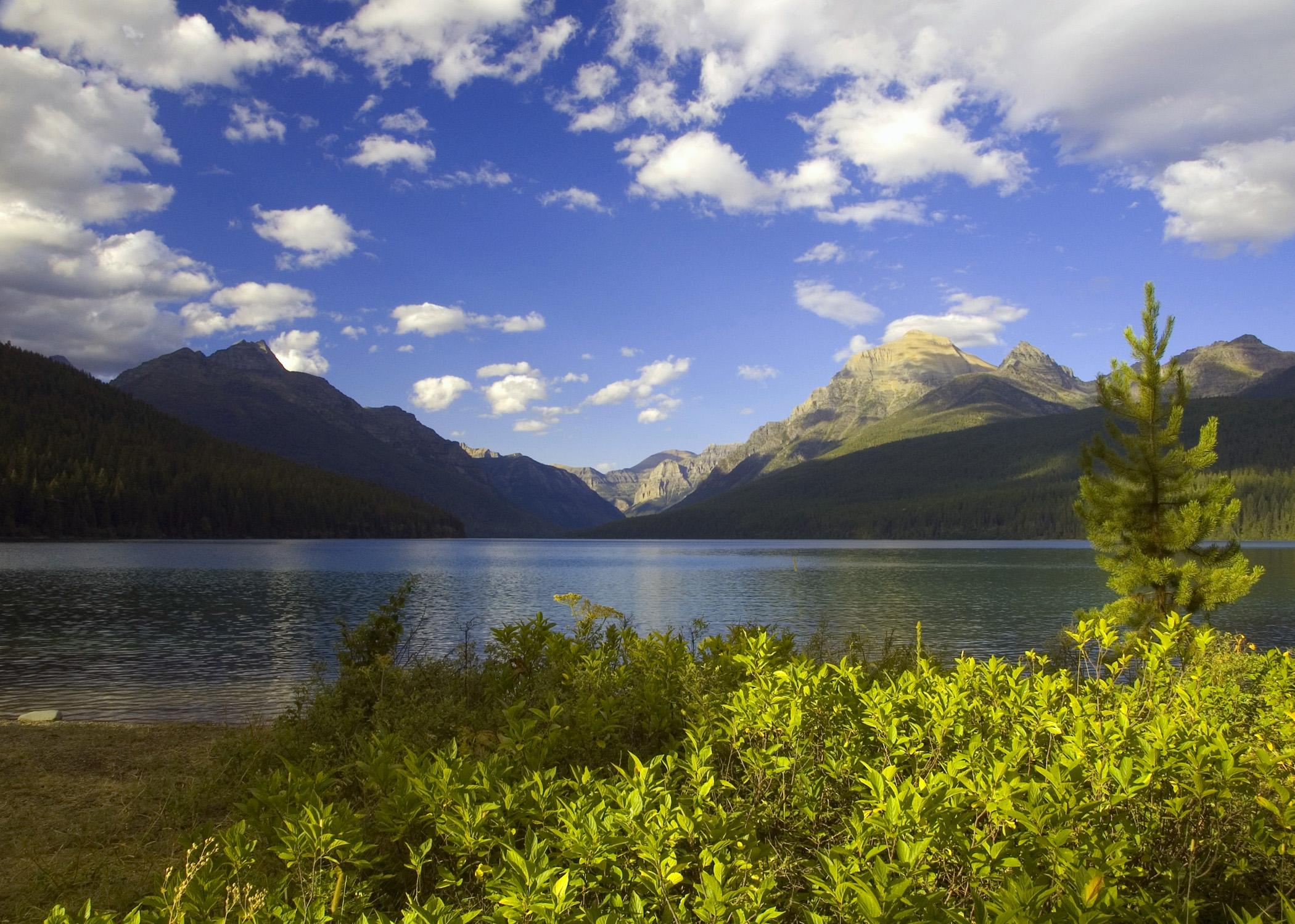 Bowman Lake (GNP)
