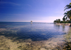 Beach Front (Ambergris Caye)