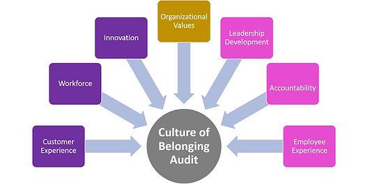Culture of Belonging Audit Picture.jpg