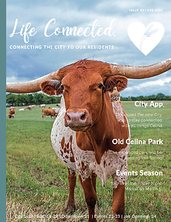 February Life Connected Newsletter_Page_01.png