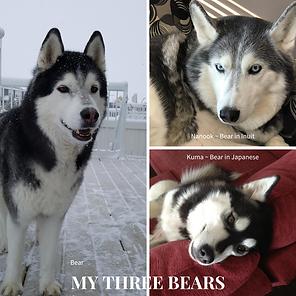 My Three Bears (1).png