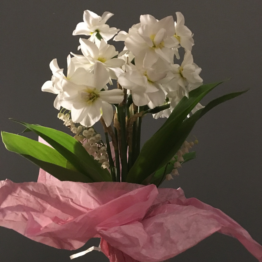 A bouquet of paper whites.
