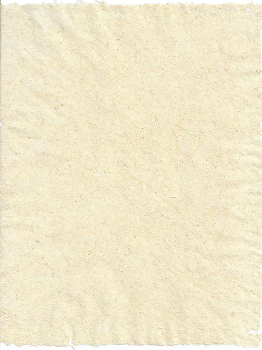 Eulalia &daylily 8.5x11 v.thin