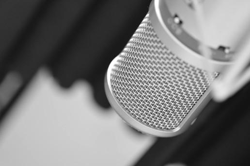 Studio mic SE3300