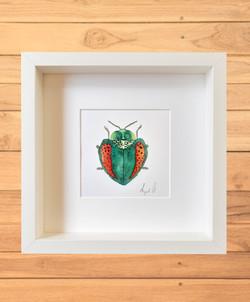 escarabajo verde textura