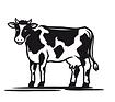 vache_modifié.png