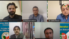 March 27 Webinar: Recognizing the Partition of India formula was the biggest mistake: Dil Murad