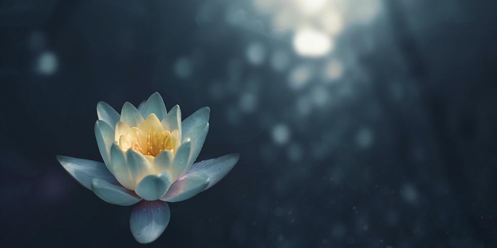 Introduction to Yogasana - Principles & Salient Features