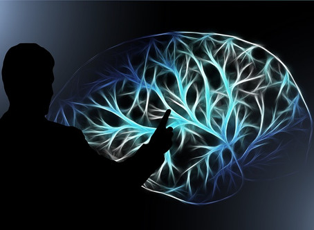 The brain and addiction