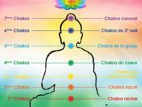 Atelier : Harmonisation des Chakras