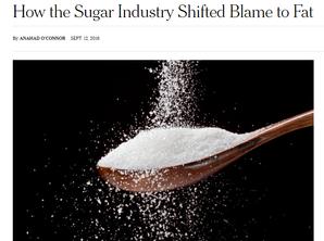 Açúcar: seria ele o grande vilão?