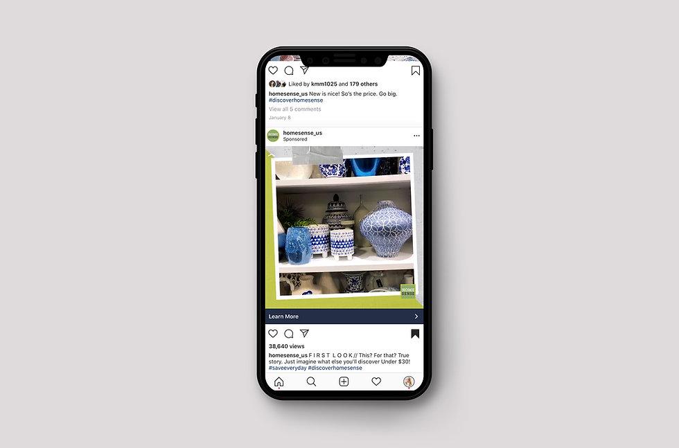 homesense iphone mockup.jpg