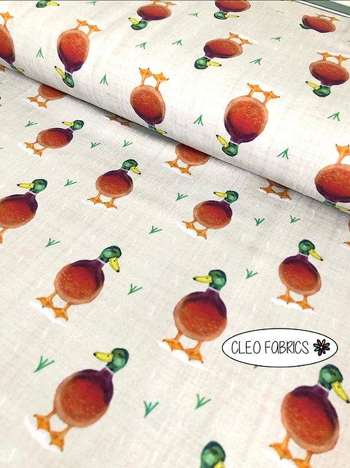 PRE ORDER 10m Ducks organic cotton jersey fabric