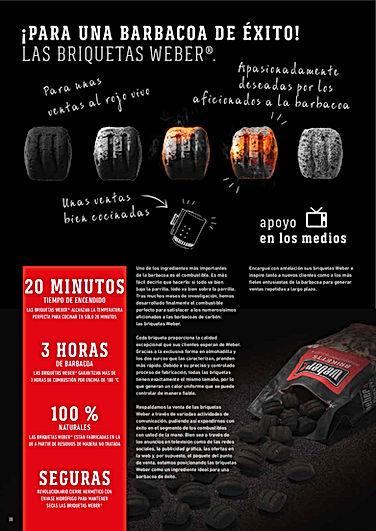briquetas carbon
