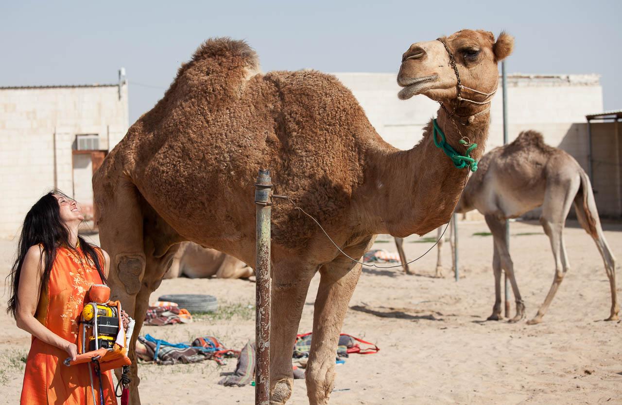 93-CamelRobot-SylvieVilla_6305