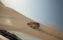 75-Desert-reveillon_5910